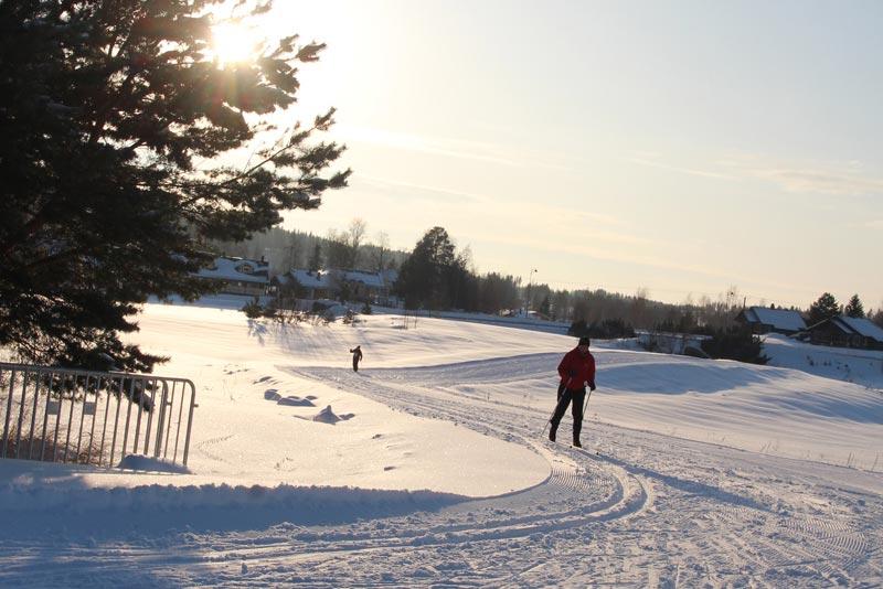 极地越野滑雪
