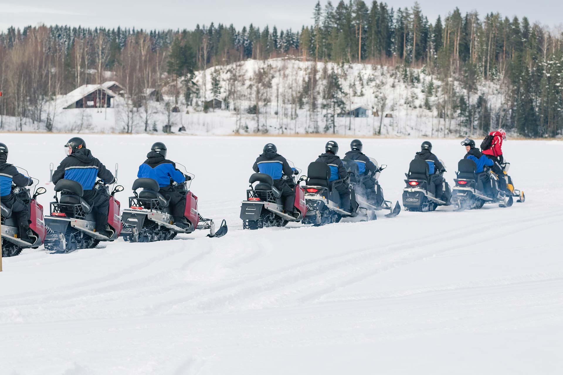 Snowmobile Safaris